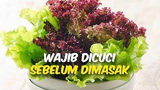 Waspada! 5 Makanan Ini Perlu Dicuci Agar Tidak Tertular Bakteri