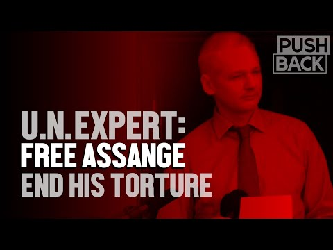 UN torture expert on Julian Assange's persecution and the lies behind it