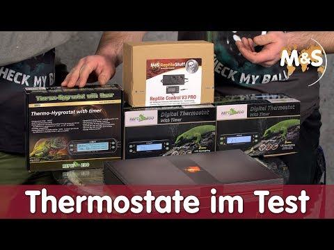 Thermostate für Terrarien im Test | Unboxing & richtig einstellen | Reptil TV