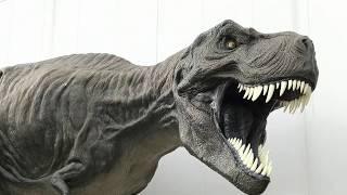 家族でお出掛けお薦めスポット!『熊本県御船町恐竜博物館&周辺施設…大きな公園もあり小さいお子さんとのお出掛けに最適です^^』H29.10.1