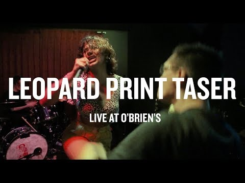 Download Leopard Print Taser - Live at O'Brien's HD Mp4 3GP Video and MP3