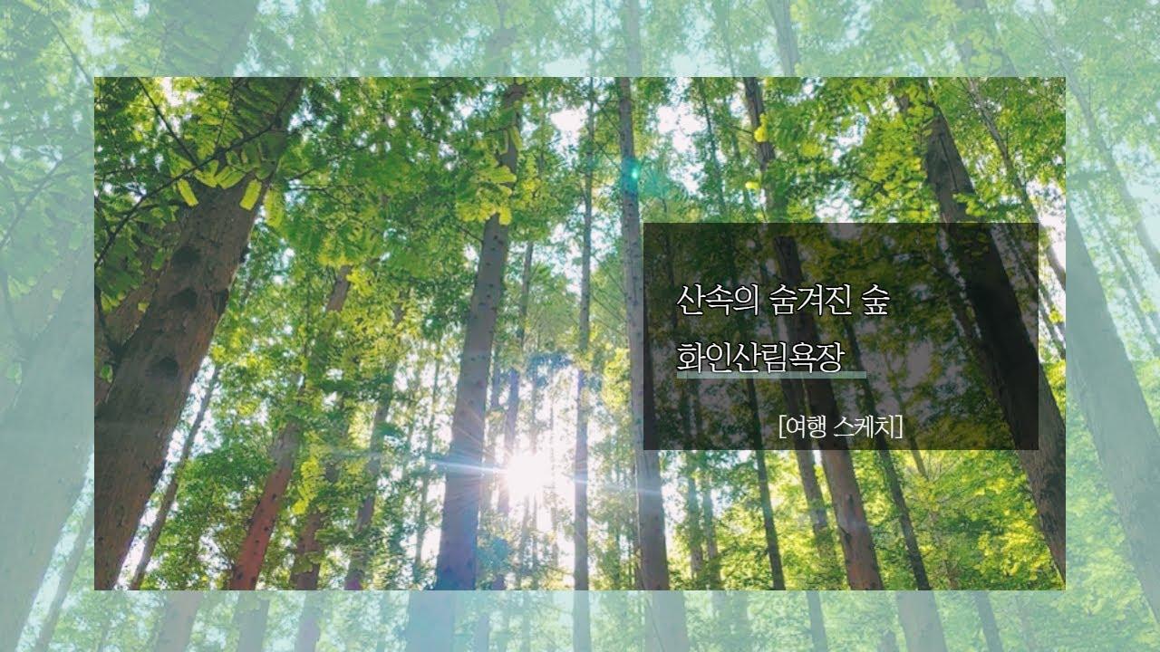 산속의 숨겨진 숲 '화인산림욕장'