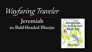 Jeremiah the Bald-Headed Bluejay