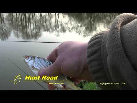 Pêche en étang – Pond fishing