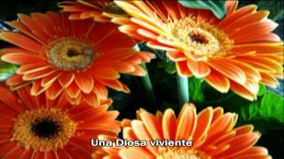 Con lo bien que te ves [HD] - Westlife Karaoke 2009 - When you're looking like that