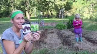 Louisiana Winter Garden Crop | Planting Experiment | Zone 8A