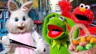 Kermit the Frog & Easter Bunny Play April Fools Joke on Elmo!