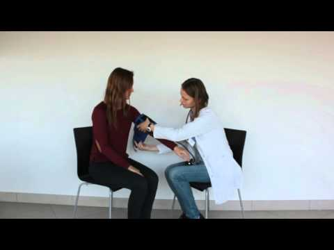 Mechanizmai vartų venos hipertenzijos sindromu