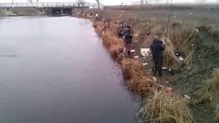 Рыбалка в станица бриньковская