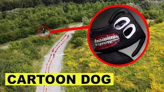 DROHNE erwischt CARTOON DOG in VERLASSENEM WALD!! | KAMBERG TV