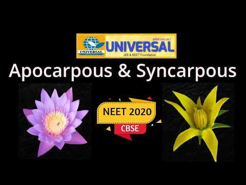 , title : 'Difference between Apocarpous & Syncarpous ovary (NEET & CBSE)