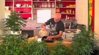 cloning medicinal marijuana