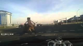 Аяй!!!ДТП с лошадью