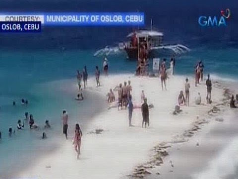 [GMA]  Saksi: Sandbar at diving site sa Oslob, Cebu, isasara muna para linisin
