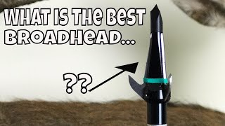What Is The Best BroadHead To Use For Deer