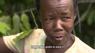 Historien bag Ylang Ylang olien (doTerra)