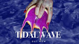Chase Atlantic   Tidal Wave (Lyric Visual)