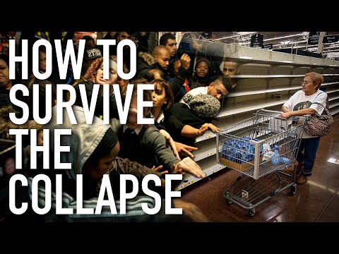 How to Survive the Imminent Economic Collapse & Next Great Depression! - Great Epic Economist Video