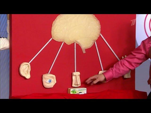 Малышева о том, как лечить головную боль без лекарств