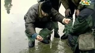 Диалоги о рыбалке весна плотва