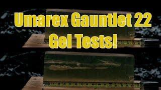 Umarex Gauntlet 22 PCP Pellet Rifle High Speed Video and Gel Shots