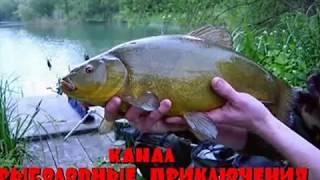 Супер рыбалка на  Большого Линя. Отлично отловился.
