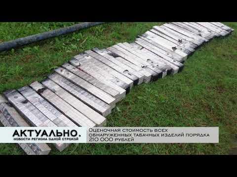 Актуально Псков / 27.10.2020