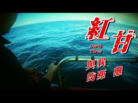 在船上晃了十多個小時,看了都累,真的猛