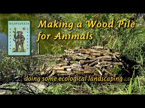 Making a Wood Pile for Animals - doing some ecological landscaping