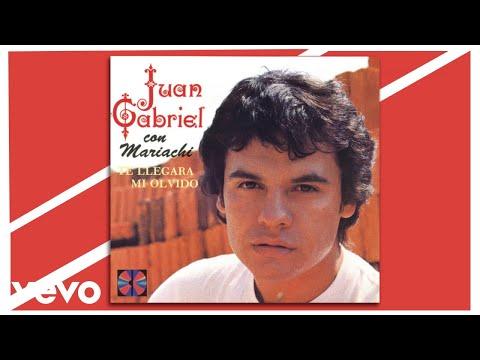 Juan Gabriel - Me Despertó la Realidad (Cover Audio)