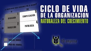 Ciclo de vida de la organización: La naturaleza del crecimiento