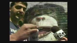 Reportaje de Graffiti en Televisión