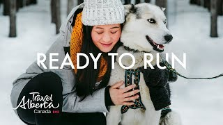 Dog Sledding in Alberta's Canadian Rockies | Winter Adventures | Alberta, Canada