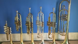 The Trumpet Family