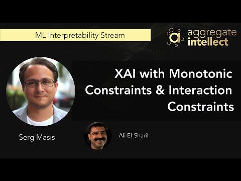 XAI with Monotonic Constraints & Interaction Constraints
