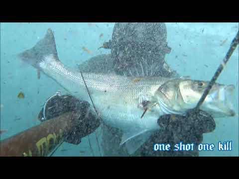 Le attrezzature più a buon mercato per pesca