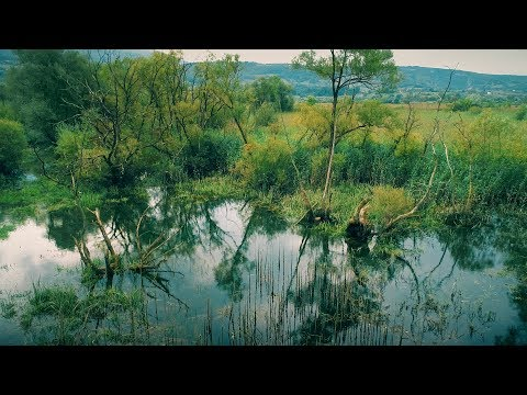 Bočačko jezero iz zraka - Dron.ba za N1