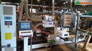 MÁY ĐÁNH MỘNG 2 ĐẦU CNC WM-D200cnc Woodmaster giá tốt nhất tại Bình Dương