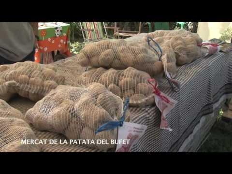 Arrels Mercat de la Patata del Bufet d'Orís