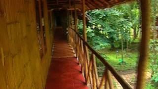 Pepper Green Village, Wayanad