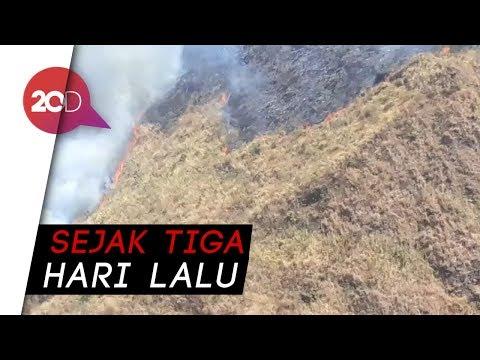 Kebakaran di Gunung Arjuna-Welirang Masih Membara