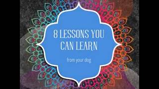 So Many Great Lessons