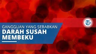 Gangguan Pembekuan Darah, Penyakit yang Sebabkan Darah Sulit Berhenti dan Susah Menggumpal