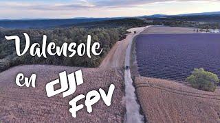 Lavandes de Valensole (& buggy) en drone DJI FPV