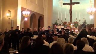 Video: Ego sum vitis vera - Gwendolyn Sommereyns