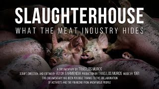 Slaughterhouse: What the meat industry hides