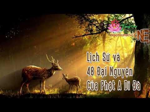 Lược Sử Và 48 Đại Nguyện Của Phật A Di Đà