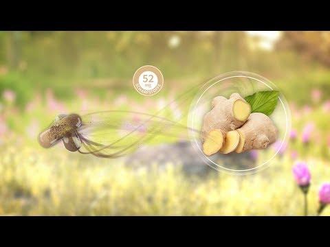 Phytholistic Gingerin - die ganze Ingwer Wurzel in Bio-Qualität in einer Kapsel