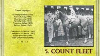 Top 10 Thoroughbred Champions Of The 20th Century
