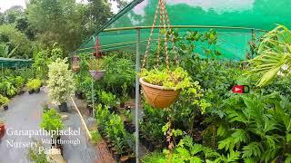 Ganapathiplackel Garden / Nursery Farm Visit Near Elikkulam, Paika, Ponkunnam, Kottayam
